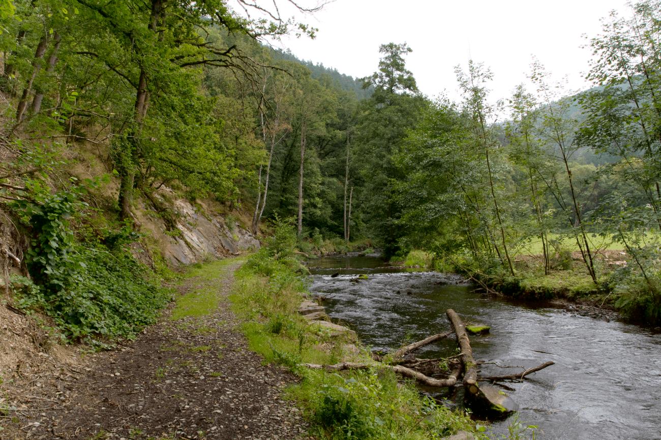 Ardennen Fernweh