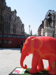 red-elephant