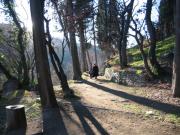 botanic-garden-tbilisi2