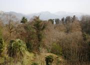 View on snow in botanical garden