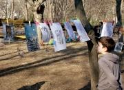 Drawings in trees