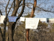 Messages in trees