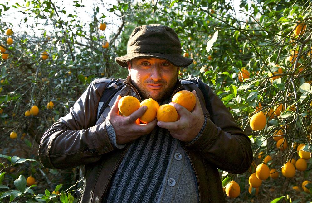 He loves fresh lemons