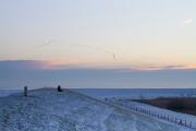 zonsopgang op de dijk met opvliegende ganzen