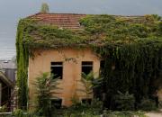 groen huis
